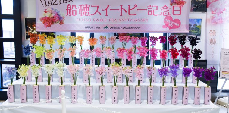 2018船穂スイートピー記念日イベント