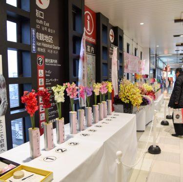 2018船穂スイートピー記念日イベント 1-3