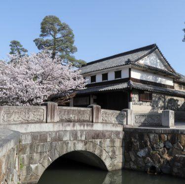 酒津公園と美観地区の桜(2018/3/30) 1-2