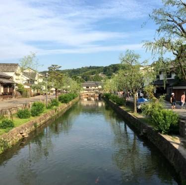 美観地区・倉敷川河畔の柳が剪定 1-2
