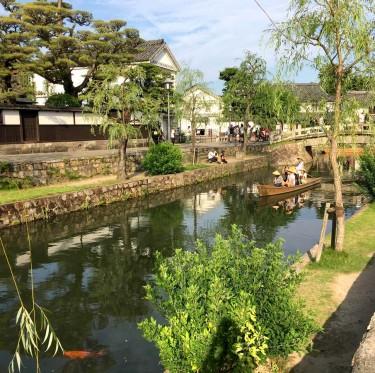 美観地区・倉敷川河畔の柳が剪定 2-3