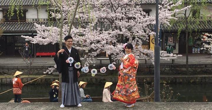倉敷市内で桜が満開でした