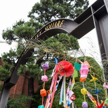 倉敷美観地区・七夕飾り 1-3