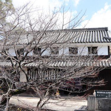 倉敷美観地区の桜の蕾の様子(平成31年3月24日) 3-1